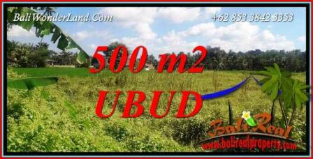 Land for sale in Ubud Bali TJUB724