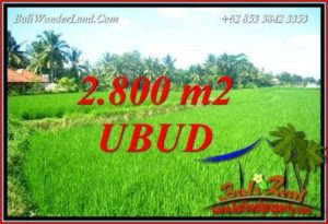 Beautiful Land for sale in Ubud TJUB726