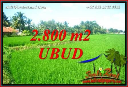 Beautiful Land for sale in Ubud TJUB726