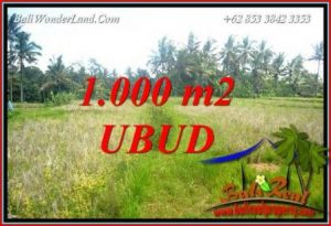 FOR sale Beautiful Property Land in Ubud TJUB727