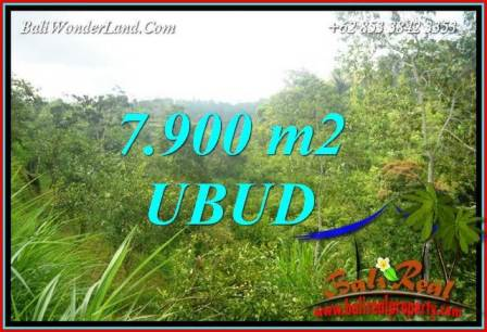 Beautiful Property Ubud Tegalalang 7,900 m2 Land for sale TJUB729