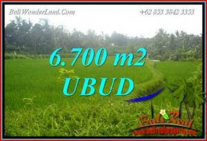 Affordable Property Land sale in Ubud TJUB731