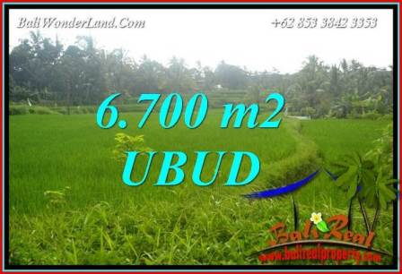 Beautiful Property 6,700 m2 Land for sale in Ubud Tegalalang Bali TJUB731