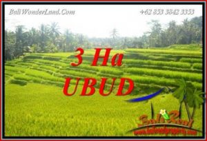Beautiful Property Ubud Tegalalang 30,000 m2 Land for sale TJUB733