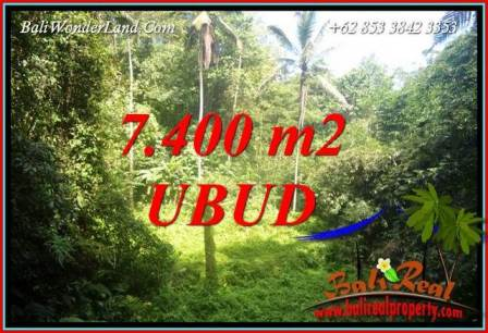 Magnificent Land in Ubud for sale TJUB734