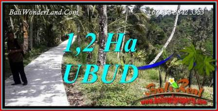 FOR sale Exotic Property 12,000 m2 Land in Ubud Tegalalang Bali TJUB740
