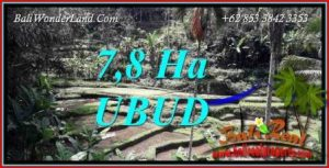 Affordable Property Ubud Payangan 78,000 m2 Land for sale TJUB741