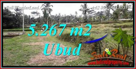 Affordable 5,267 m2 Land in Ubud Bali for sale TJUB743