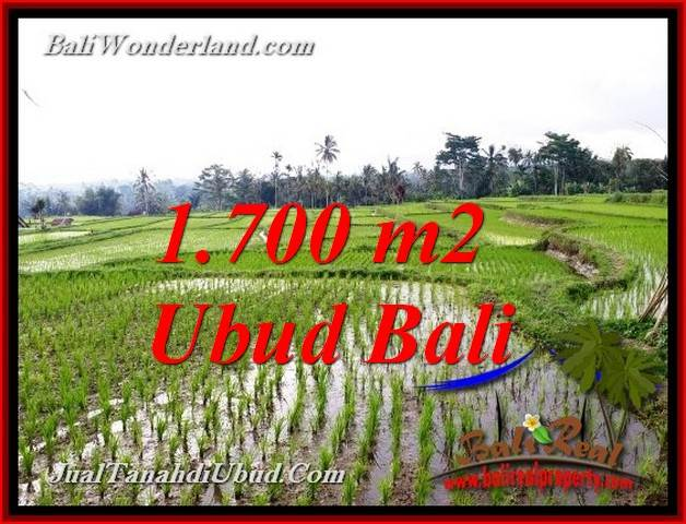 Exotic PROPERTY TEGALALANG UBUD 1,700 m2 LAND FOR SALE TJUB770