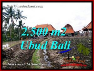 FOR SALE Affordable 2,500 m2 LAND IN UBUD BALI TJUB772