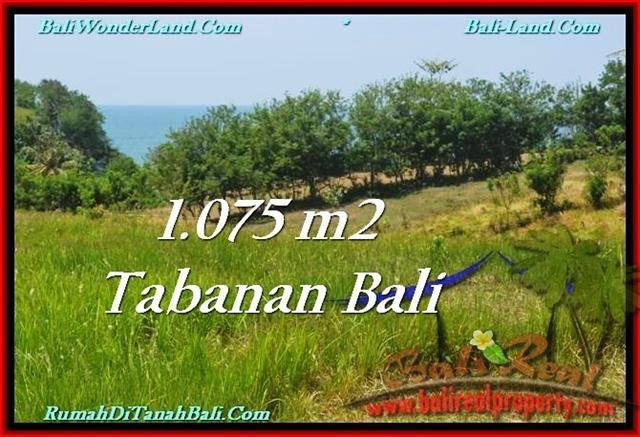 Beautiful LAND FOR SALE IN TABANAN TJTB230