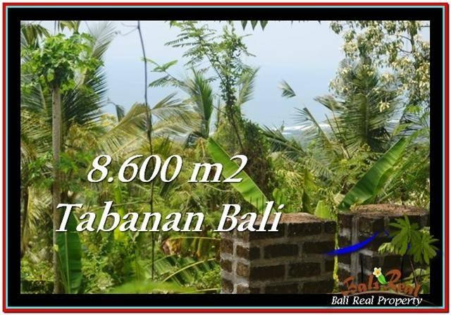 Exotic PROPERTY 8,600 m2 LAND FOR SALE IN Tabanan Selemadeg TJTB235