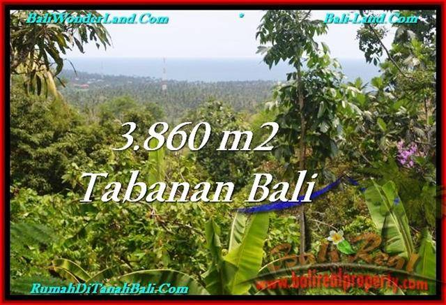 Magnificent PROPERTY 3,860 m2 LAND IN Tabanan Selemadeg FOR SALE TJTB236