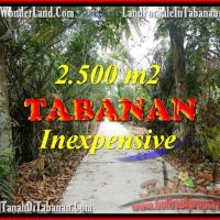 Exotic LAND FOR SALE IN TABANAN TJTB160