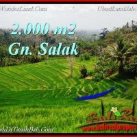 Magnificent PROPERTY LAND FOR SALE IN TABANAN BALI TJTB220