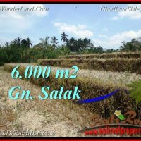 Exotic PROPERTY Tabanan Selemadeg 6,000 m2 LAND FOR SALE TJTB221