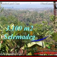Beautiful PROPERTY LAND IN TABANAN BALI FOR SALE TJTB222