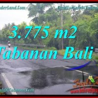 Beautiful PROPERTY LAND SALE IN TABANAN TJTB271