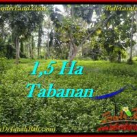 Affordable 15,550 m2 LAND FOR SALE IN TABANAN BALI TJTB272