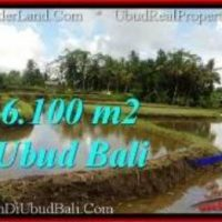 Beautiful PROPERTY 6,100 m2 LAND IN Ubud Pejeng BALI FOR SALE TJUB547