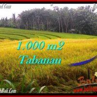 LAND SALE IN Tabanan Selemadeg BALI TJTB273