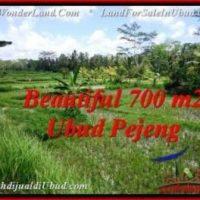 Affordable 700 m2 LAND IN UBUD BALI FOR SALE TJUB534