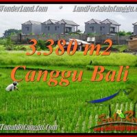 FOR SALE Magnificent PROPERTY 3,380 m2 LAND IN CANGGU BALI TJCG199