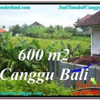 Exotic CANGGU 600 m2 LAND FOR SALE TJCG206