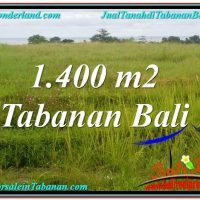 FOR SALE Affordable PROPERTY 1,400 m2 LAND IN TABANAN TJTB309