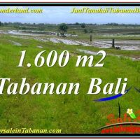 Affordable PROPERTY LAND IN TABANAN BALI FOR SALE TJTB310