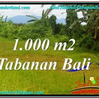 Tabanan Selemadeg BALI LAND FOR SALE TJTB311