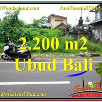 Affordable PROPERTY UBUD LAND FOR SALE TJUB565