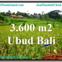 FOR SALE Exotic PROPERTY 3,600 m2 LAND IN UBUD BALI TJUB566