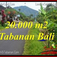 Magnificent PROPERTY 20,000 m2 LAND IN Tabanan Penebel BALI FOR SALE TJTB315