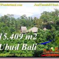 Exotic PROPERTY LAND FOR SALE IN UBUD TJUB568