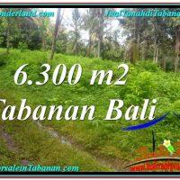 Magnificent LAND SALE IN TABANAN TJTB313