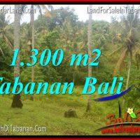 Affordable PROPERTY 1,300 m2 LAND FOR SALE IN TABANAN BALI TJTB314