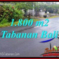 LAND SALE IN Tabanan Kota BALI TJTB321