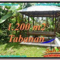 Affordable PROPERTY LAND IN TABANAN FOR SALE TJTB294
