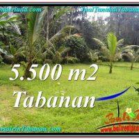 Affordable PROPERTY LAND IN TABANAN FOR SALE TJTB295