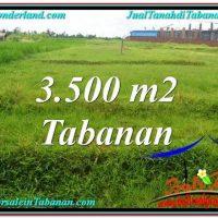 FOR SALE Exotic LAND IN Tabanan Kerambitan BALI TJTB302