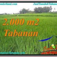 Beautiful LAND FOR SALE IN TABANAN TJTB303
