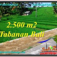 Exotic PROPERTY TABANAN LAND FOR SALE TJTB305