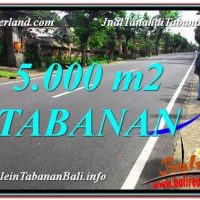 FOR SALE Exotic 5,000 m2 LAND IN Badung BALI TJTB332