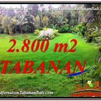2,800 m2 LAND SALE IN TABANAN BALI TJTB333