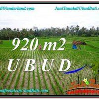 Beautiful LAND IN UBUD FOR SALE TJUB575