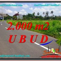 Exotic PROPERTY LAND FOR SALE IN UBUD TJUB580