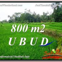 Beautiful PROPERTY LAND FOR SALE IN UBUD BALI TJUB581