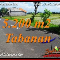 Exotic PROPERTY LAND SALE IN TABANAN TJTB351