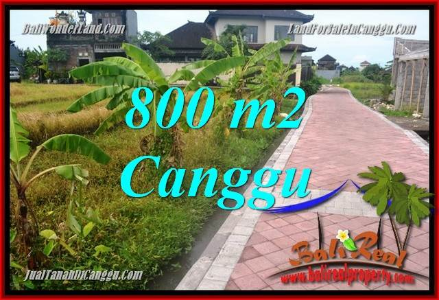 FOR SALE Exotic PROPERTY 800 m2 LAND IN CANGGU TJCG221